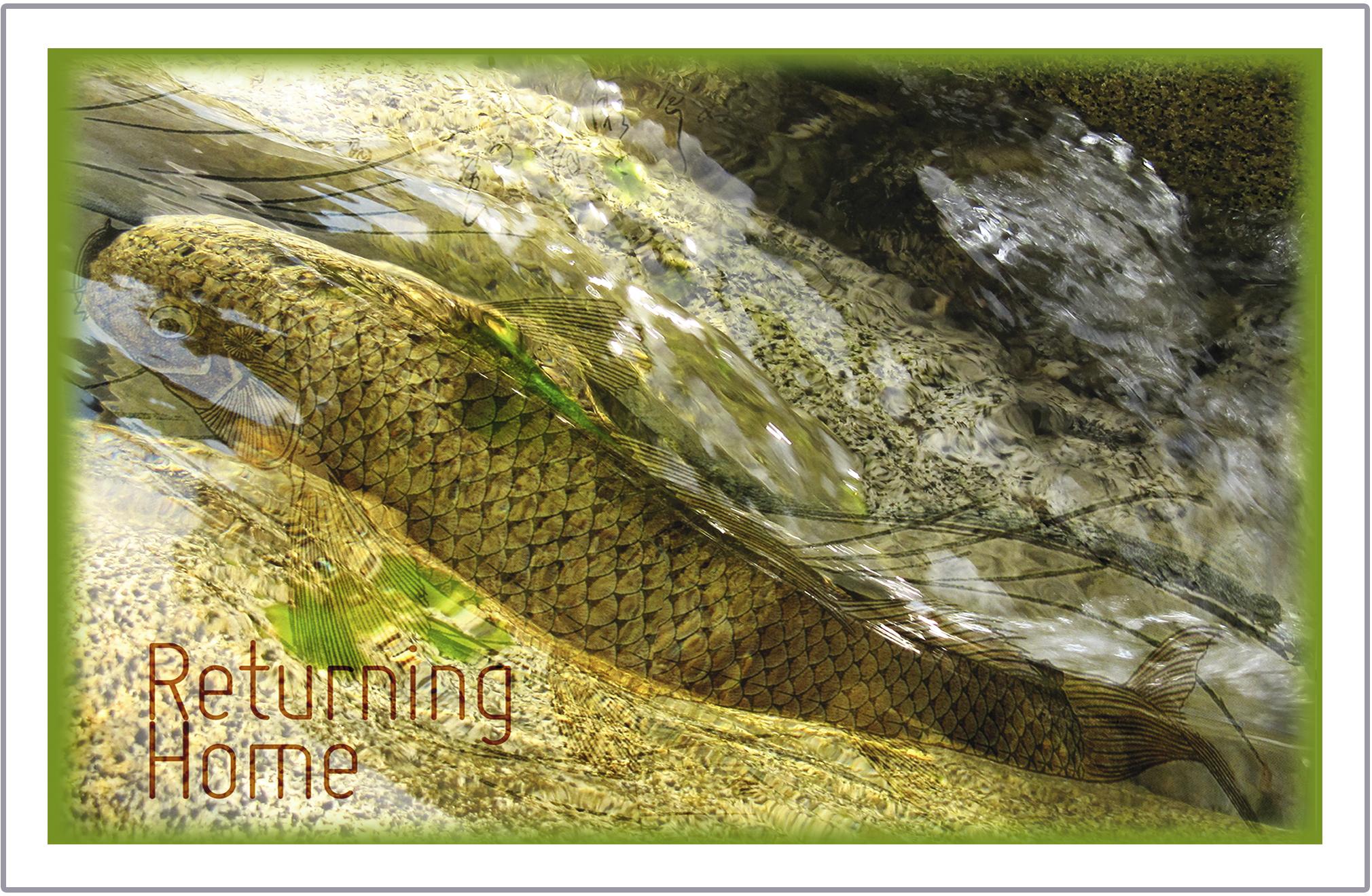 Returning Home greeting card