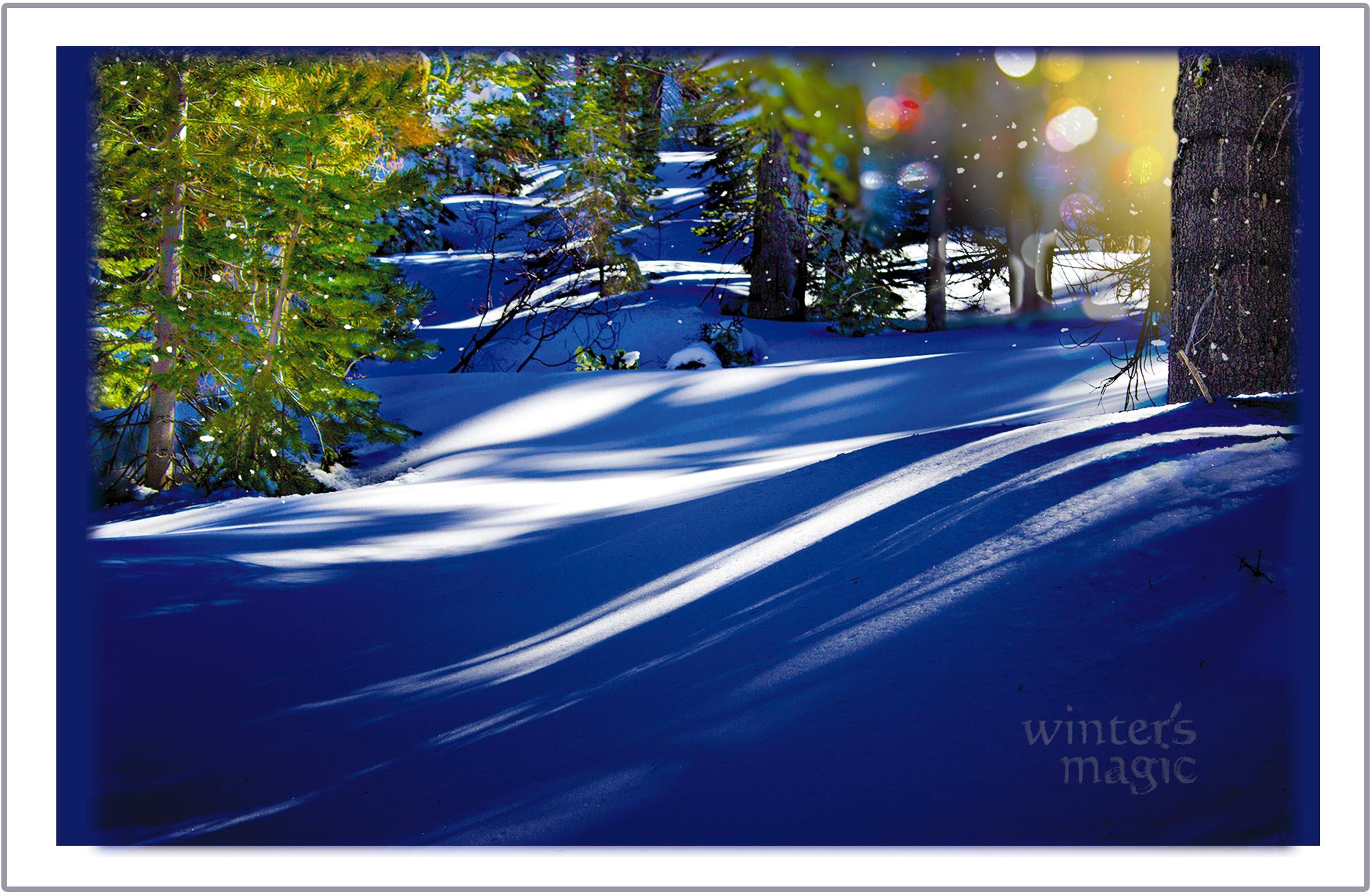 Winter's Magic greeting card